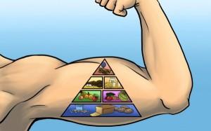 Питание для мышц очень важно