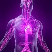 Список болезней и заболеваний систем человека